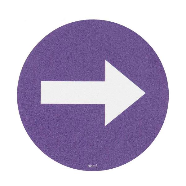 Señal Suelo Flecha Dirección Obligatoria