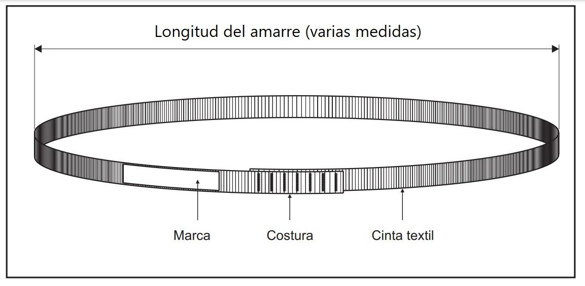 Estructura de la Baga.